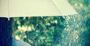 《寄稿記事》WEBメディア レニピ「雨降りの日に「ハレ」を渡すひと」