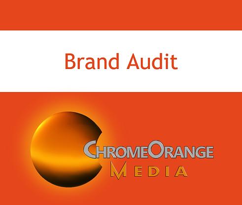 brand audit questionnaire screen shot.png