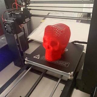 skull 3dprint