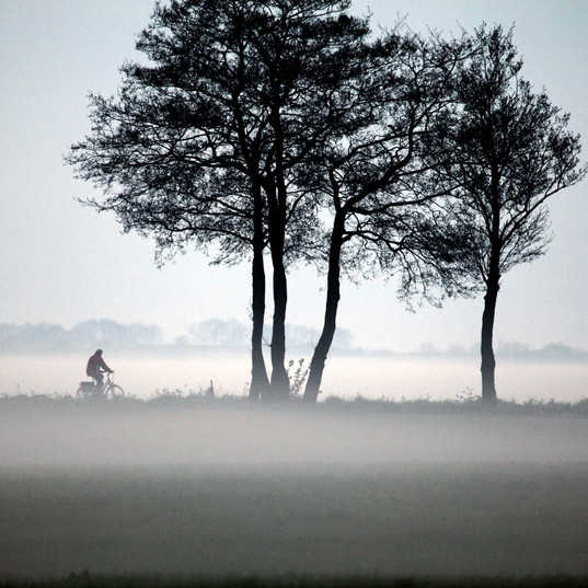 THE LONELY BIKER