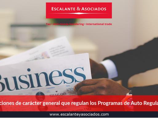 """""""Disposiciones de carácter general que regulan los Programas de Auto Regularización"""""""