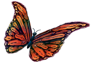 BUTTERFLY BUTTON.png