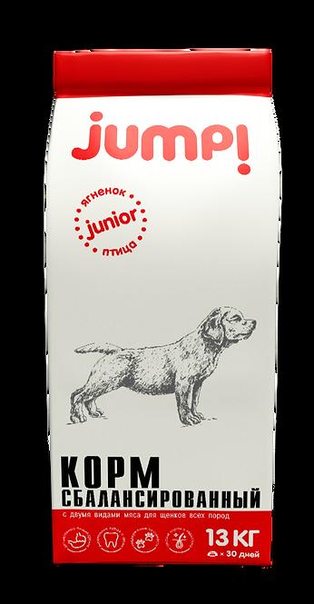 Jump! JUNIOR для щенков