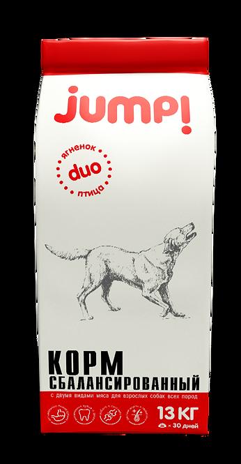 Jump! DUO для собак
