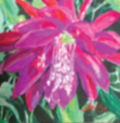 Jo Reitze Epiphyllum gouache 15cm sq cmy