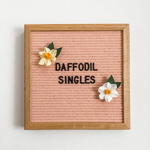 Letterboard Accessories - letterboard ornament - Spring - Daffodil Singles