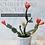 Thumbnail: Make Your Own Potted Christmas Cactus - Downloadable/Printable Tuto