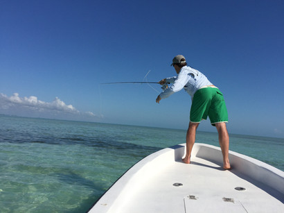 Fly Fishing Paradise!