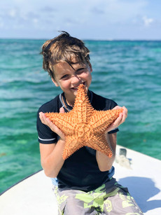 Starfish from the sea!