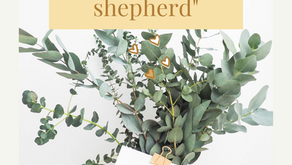 Introducing Jesus: I am the good Shepherd