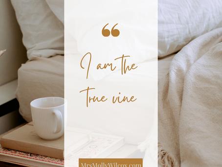 "Introducing Jesus: ""I am the true vine"""
