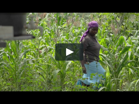 Watch this video to see how technology improved the livelihood of a farmer in Kenya - Africa