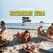 Watermelon Sugar Cover.jpg