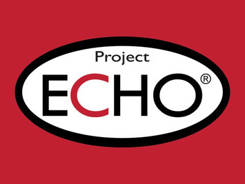 Hepatitis B ECHO Program