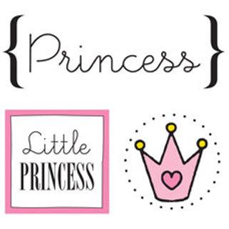 52031 Princess Quick Card