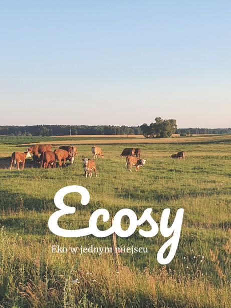 Ecosy