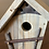Thumbnail: Twig and Pine Bird House