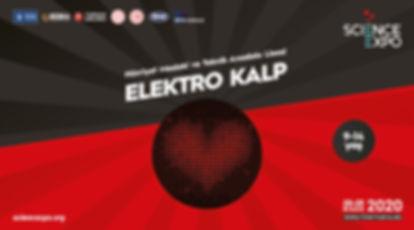 8-elektro-kalp.jpg