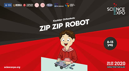 37-zip-zip-robot.jpg