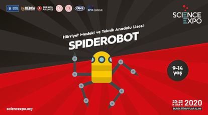 9-spiderobot.jpg
