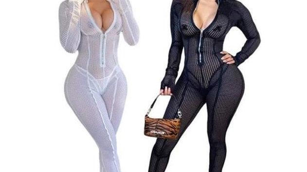 Sheer Full Bodysuit/ Long Sleeve w/ Zipper