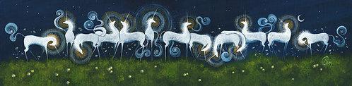 13 Unicorns