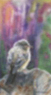 CherAnderson-Sedona Colors.jpg