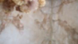出雲市姫原の美容室マツエクグラニテ