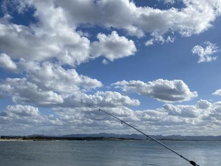 休日の魚釣り〇