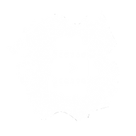video-player #1-1.png