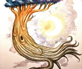 Dreamer Tree