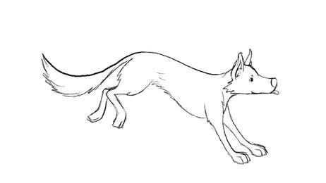 Dog Run Cycle