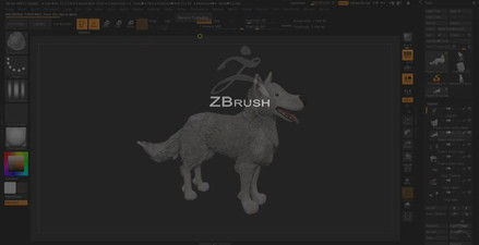 Dog Model Zbrush
