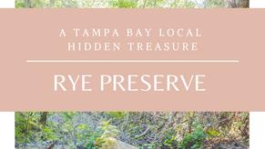 A Tampa Bay Local Hidden Treasure- Rye Preserve