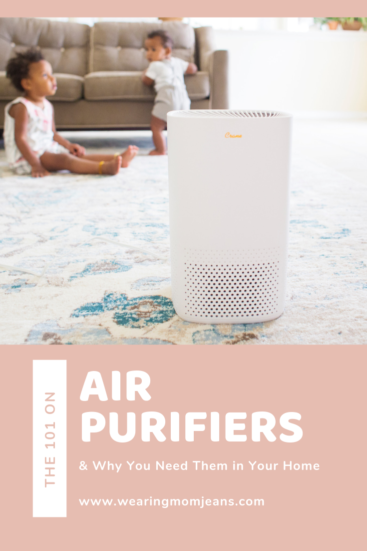 The 101 on Air Purifiers & Why You Need Them in Your Home