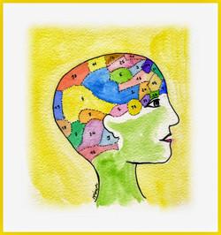 les loges du cerveau