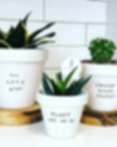 plant puns_edited.jpg