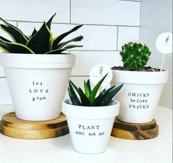 Plant & Puns!
