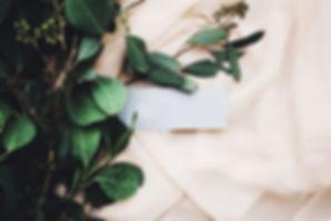 Eucalyptus Ast -Tencel