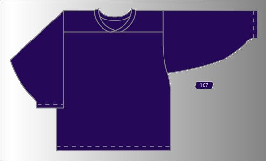 Practice Jersey   Team - Purple