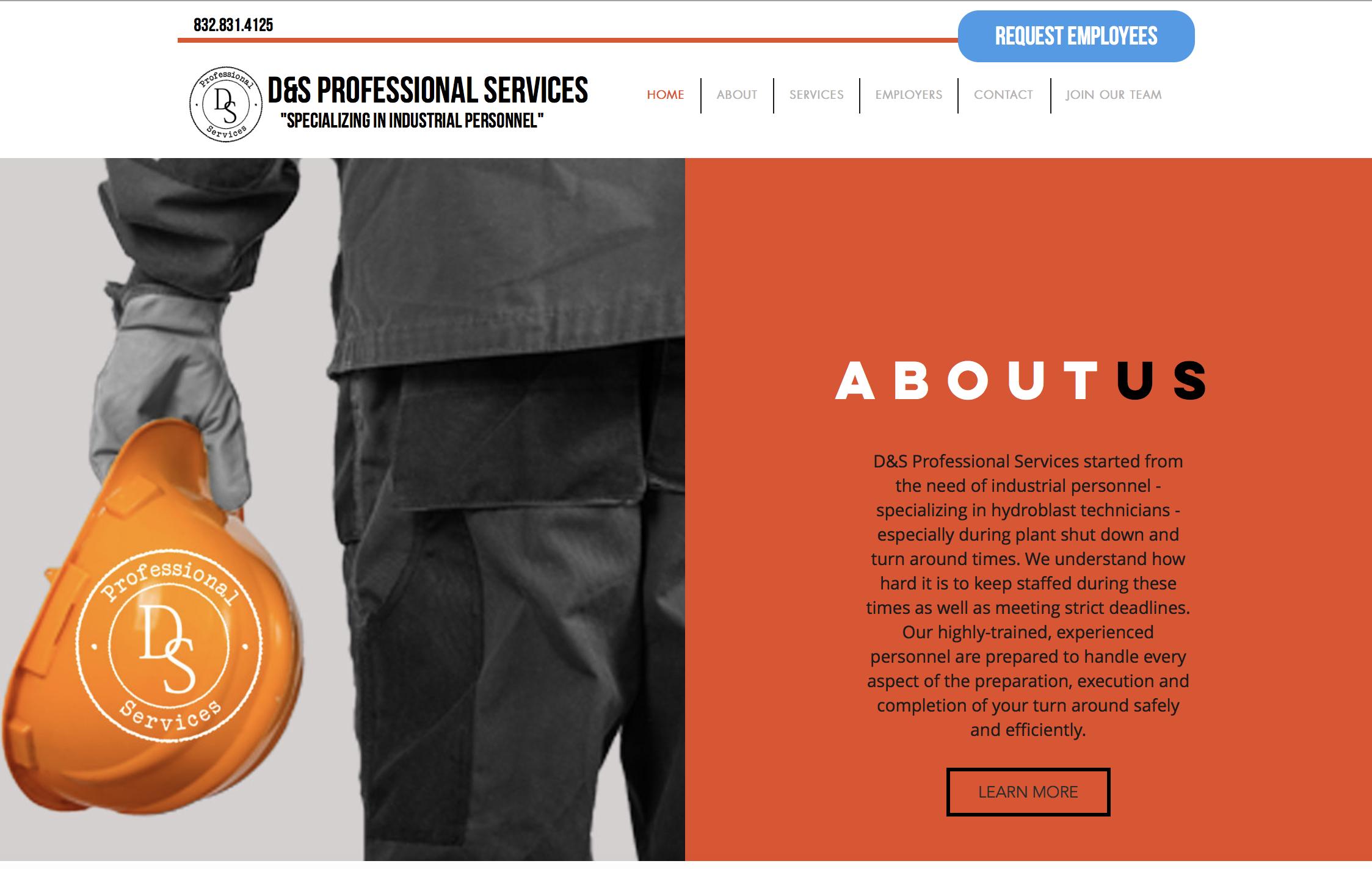 D&S Professional Services
