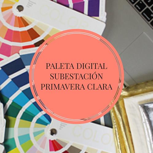 Paleta Digital Subestación Primavera Clara