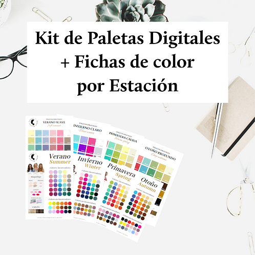 Kit de Paletas Digitales y Fichas por Estación de Color