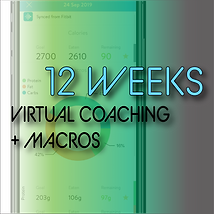 2020 Thumbnails_12 Week Virtual + Macros