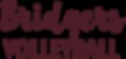 Ambridge VB Logo.png