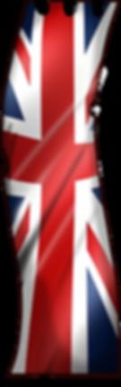 webflag.png