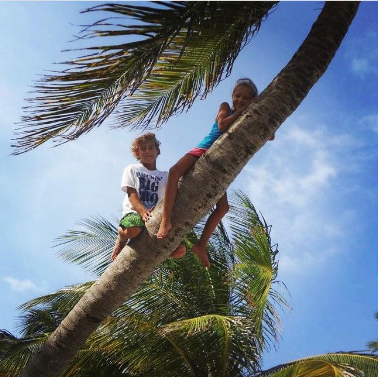 Kids in palm tree