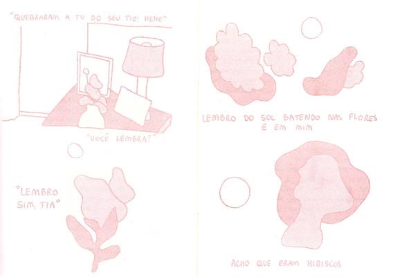 pagina a3.jpg