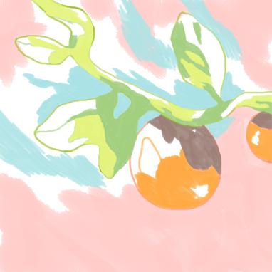frutinha.png