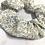 Thumbnail: Choucou - Fleurs bleues
